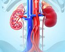 The Singapore Clinic for Kidney Diseases Pte Ltd Photos