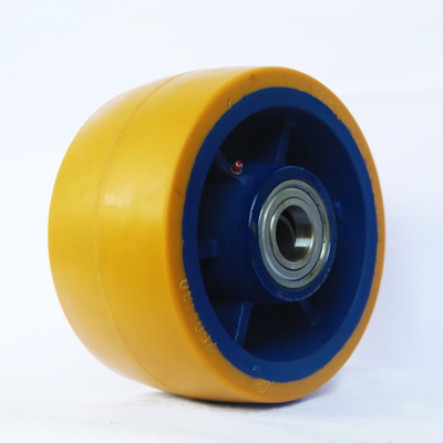 The Nylon Hydrolysing 29