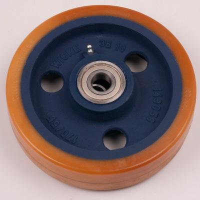 The Nylon Hydrolysing 104