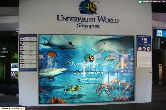 Underwater World  Sentosa Image Singapore
