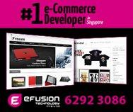 Efusion Technology Pte Ltd