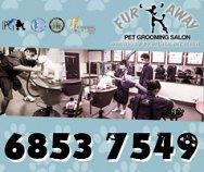 Fur & Away Pet Grooming Salon