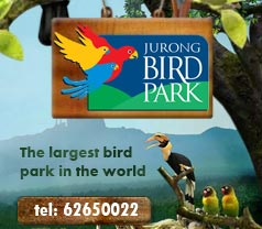 The Jurong Bird Park Pte Ltd Photos