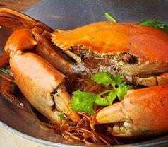 Spicy Thai-Thai Cafe Photos
