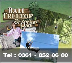 Bali Treetop Adventure Park Photos