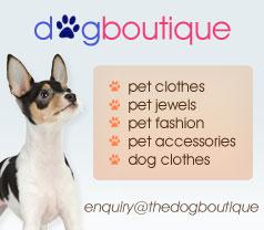 The Dog Boutique Photos